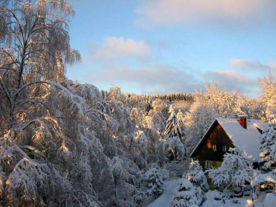 Kış Görüntüleri